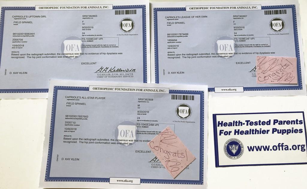 OFA-Certificates-R-W-F-crop_3331